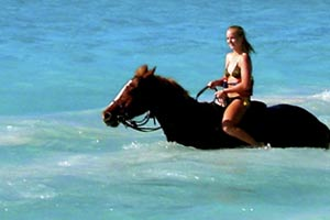 horse riding in thailand
